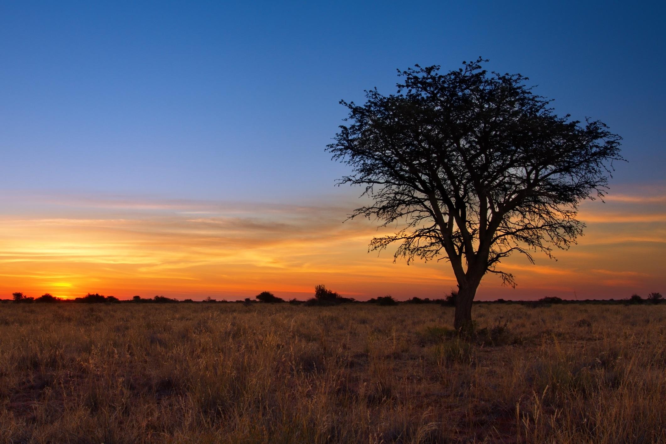 Пустинята Калахари, Ботсвана<br /> <br /> Пустинята Калахари представлява най-брутално дивата природа на Африка. Централният резерват Калахари с площ от 52 8000 квадратни километра е предизвикателство от гледна точка на достъпа заради безводието си. Това е земя на чистото приключение и срещането на стада величествен гемсбок (вид антилопа) като блещукащи миражи в Долината на измамите или къмпингуването сред гърления рев на местната лъвска гордост със сигурност ще провокира у вас усещане за привилегия.
