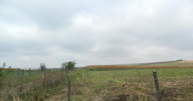 Средната цена на сделките с ниви в Добричка област достига