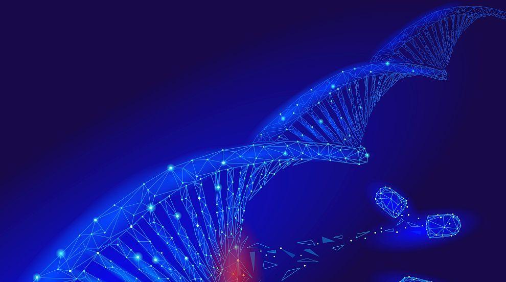 Учени ще съставят карта на генетичния код на сложните видове на планетата ни