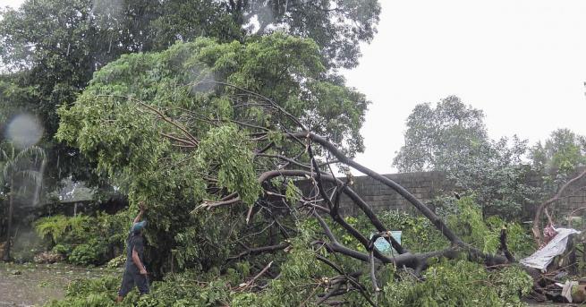 Тайфунът Мангхут причини хаос в Хонконг, където буквално разтърси небостъргачи,