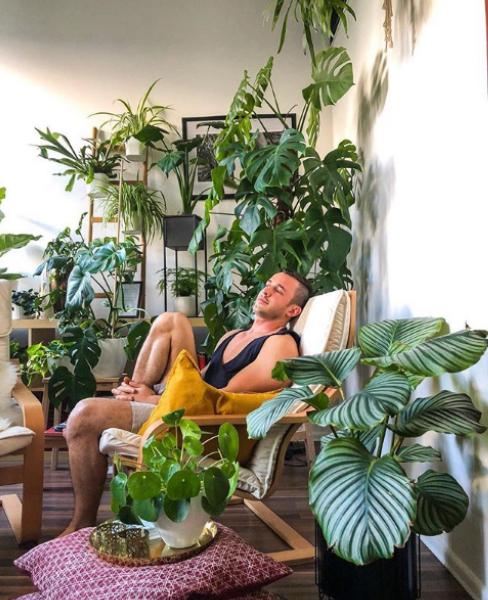 Името му е Ян Робин. Става популярен в Инстаграм с различния си и особено цветен профил. Робин обича цветята и в дома си се е обградил от куп растения. Всичките зелени. По думите му, той си е направил една истинска джунгла в домашни условия. Освен с цветята си, Робин се гордее и с въшния си вид, който умело показва, позирайки около саксиите...буквално.