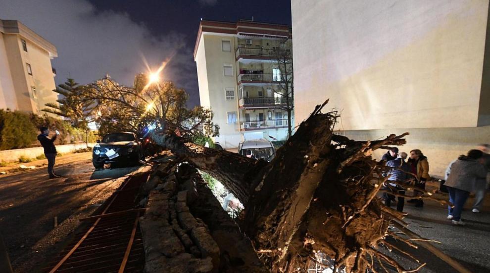 Стотици хиляди останаха без електричество в Отава заради торнадо