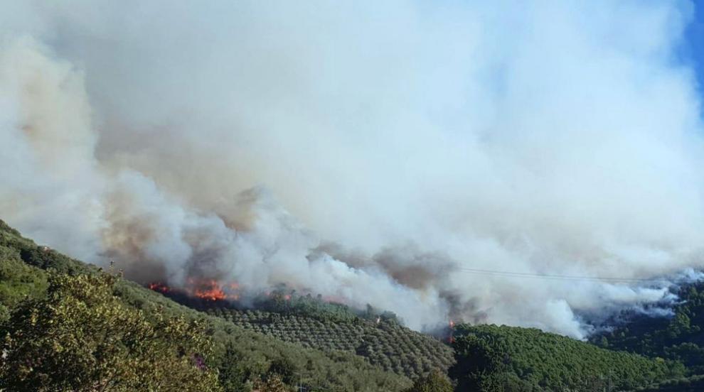 Стотици евакуирани заради огромен пожар край Пиза (СНИМКИ)