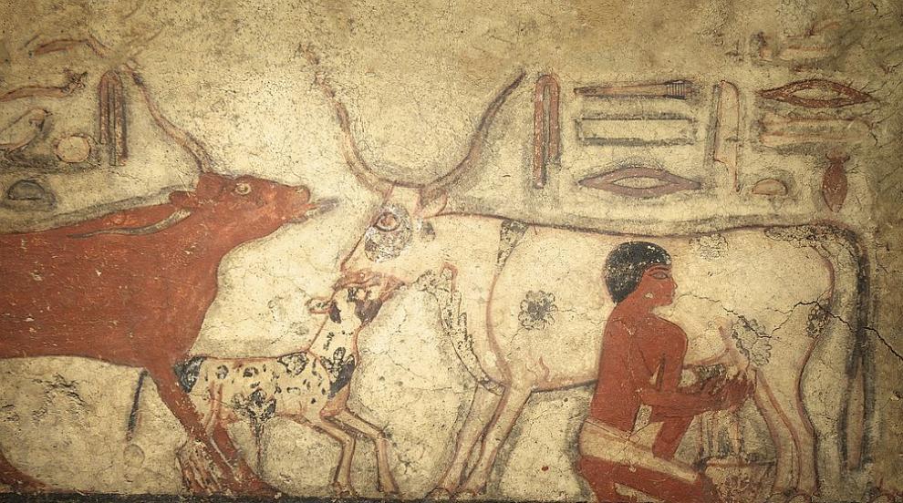 Древните египтяни вярвали, че човешката душа е безсмъртна (ВИДЕО)