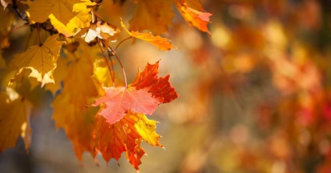 Атмосферното налягане ще бъде по-високо от средното за октомври и