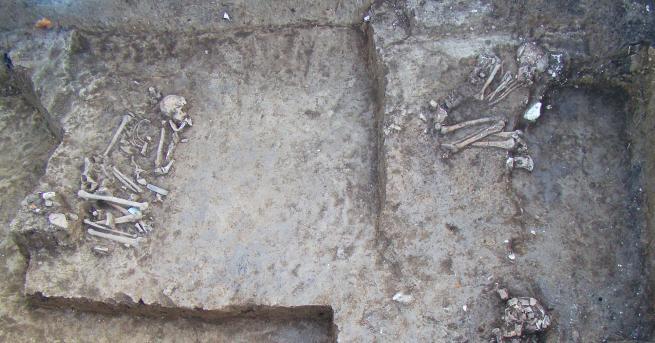 145 гроба са открити под гимназия в град Тампа, щата