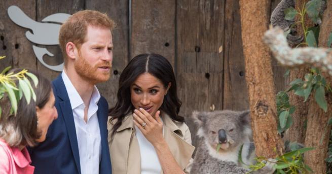 Британското кралско семейство Хари и Меган получиха бебешки подаръци, срещнаха