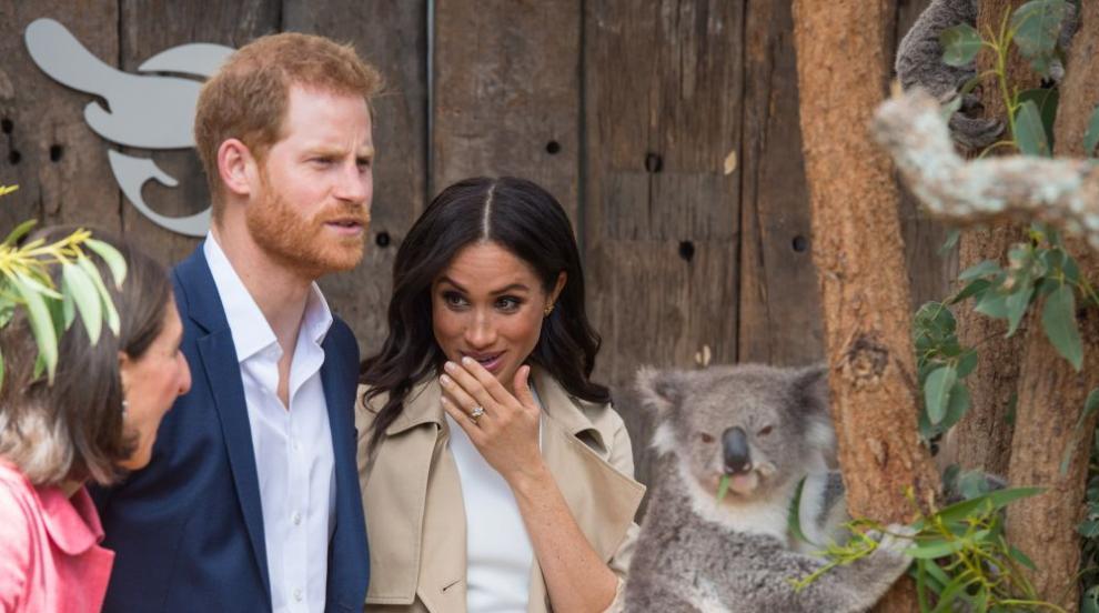 Хари и Меган се порадваха на коали, получиха и първи подаръци за бебето...