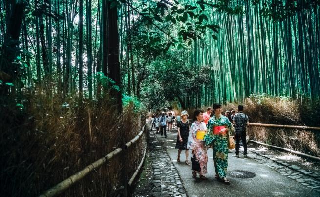 Хикикомори: ужасът на самотата в Япония