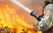 <p>Пожар гори в коритото на р. Марица</p>