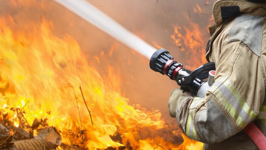 <p>Нов пожар избухна край Атина</p>