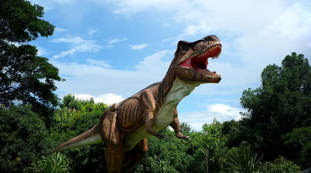 Откриха следи от необичаен вид месоядни динозаври в Австралия