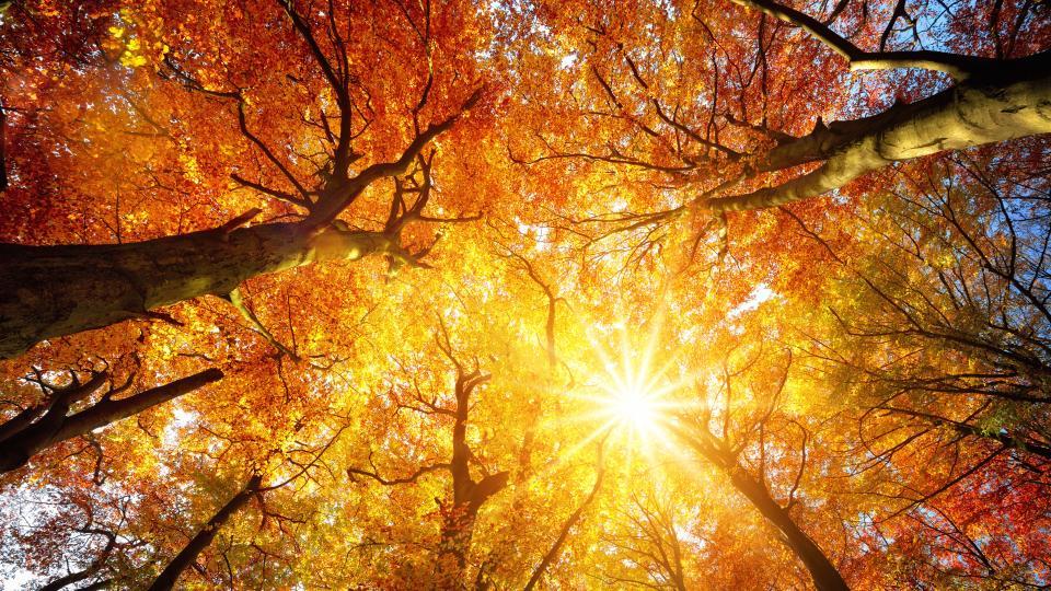 време есен