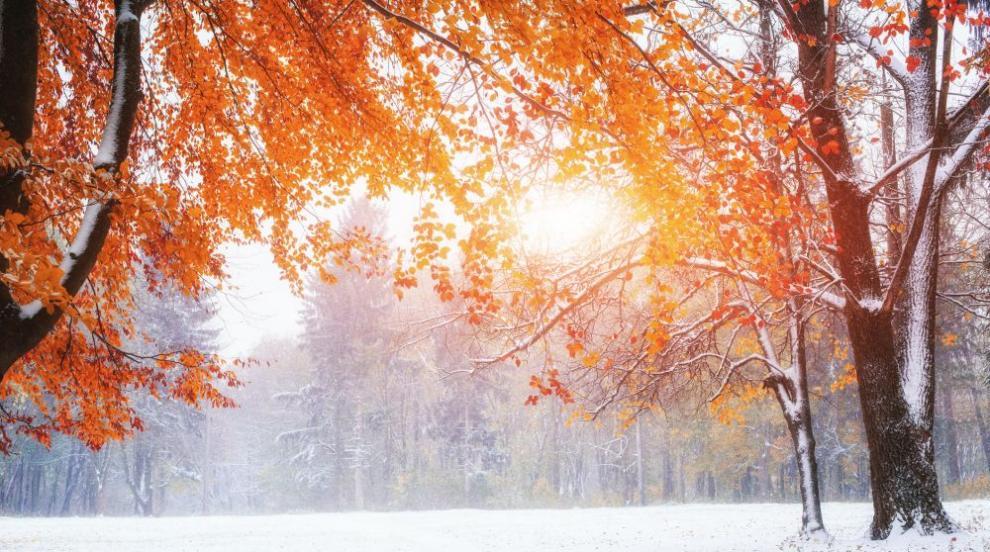 Зимата идва: сняг и студ в края на седмицата (ВИДЕО)