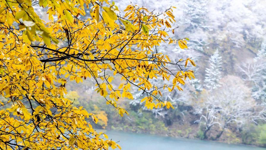 <p>Край на топлата есен, кога идва снегът</p>