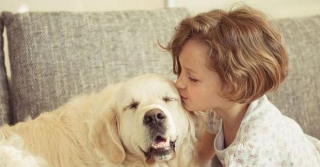 По-голяма част от стопаните на кучета ги смятат за пълноправни