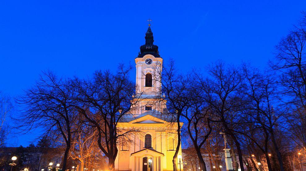 Сова или пенис? Статуя разгневи жителите на град в Сърбия (СНИМКИ)