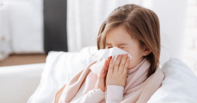 В момента все още няма грипни вируси, но започват да
