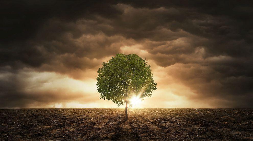 Колонизацията на Америка предизвикала климатични промени