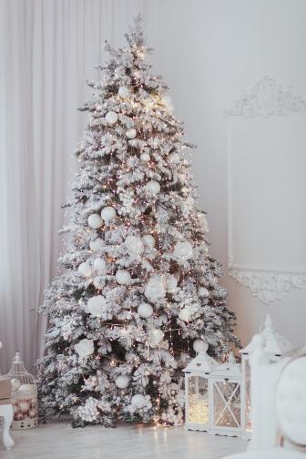 бяла коледна елха