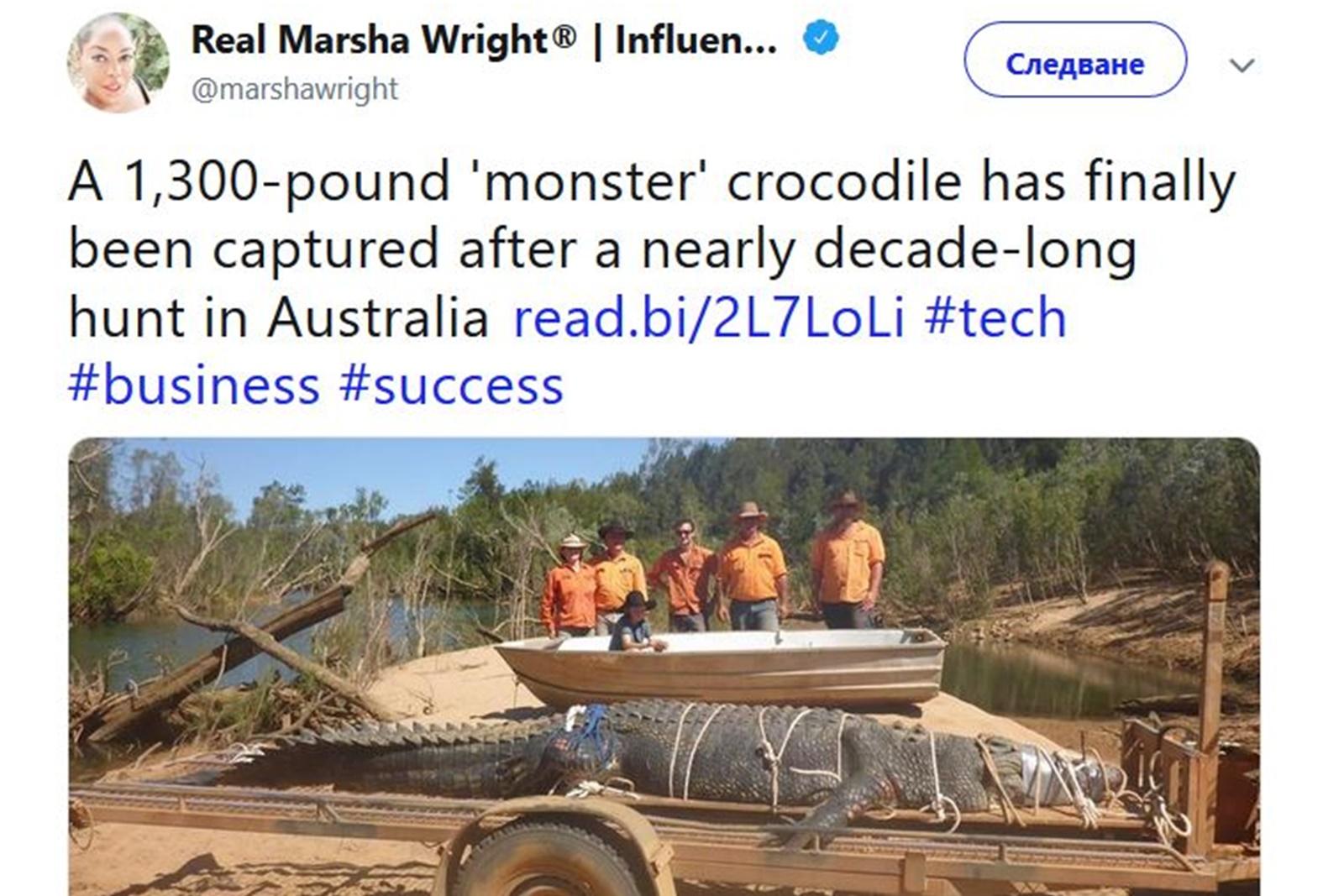 Големи крокодили<br /> Акулите не са единствените гигантски животни с голям брой остри зъби, на които може човек да се натъкне на този континент. Соленоводните крокодили, живеещи в Австралия, се славят като най-големите от всички видове по света. И ако си мислите, че щом човек може да улови акула с дължина 6,6 м, един крокодил не би бил труден за пленяване – то не сте чули за австралийският крокодил с дължина 4,7 м и тегло от 600 кг, който успява да се измъкне от ръцете на ловците повече от едно десетилетие, докато накрая не бъде заловен.
