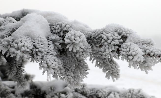 Най-студено в Кнежа, мразовито време и на Богоявление