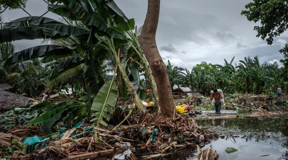 Майка откри изчезналия си син, отнесен от цунами...