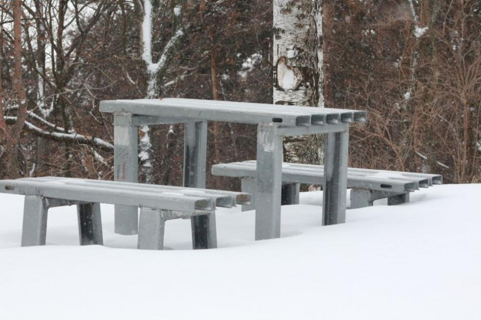 Сняг студ зима