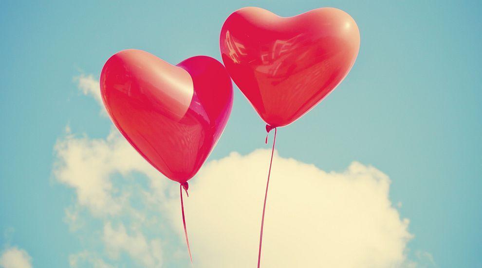 От любовчии до верни партньори: Откриха генетична формула на моногамията