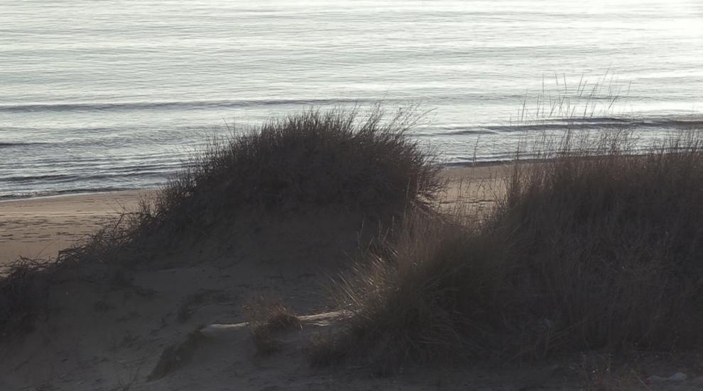 """Обрат: Прекратиха делото за унищожената дюна на """"Смокиня"""""""