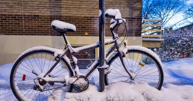 Изобилието понякога може да навреди - традиционен празник на снега