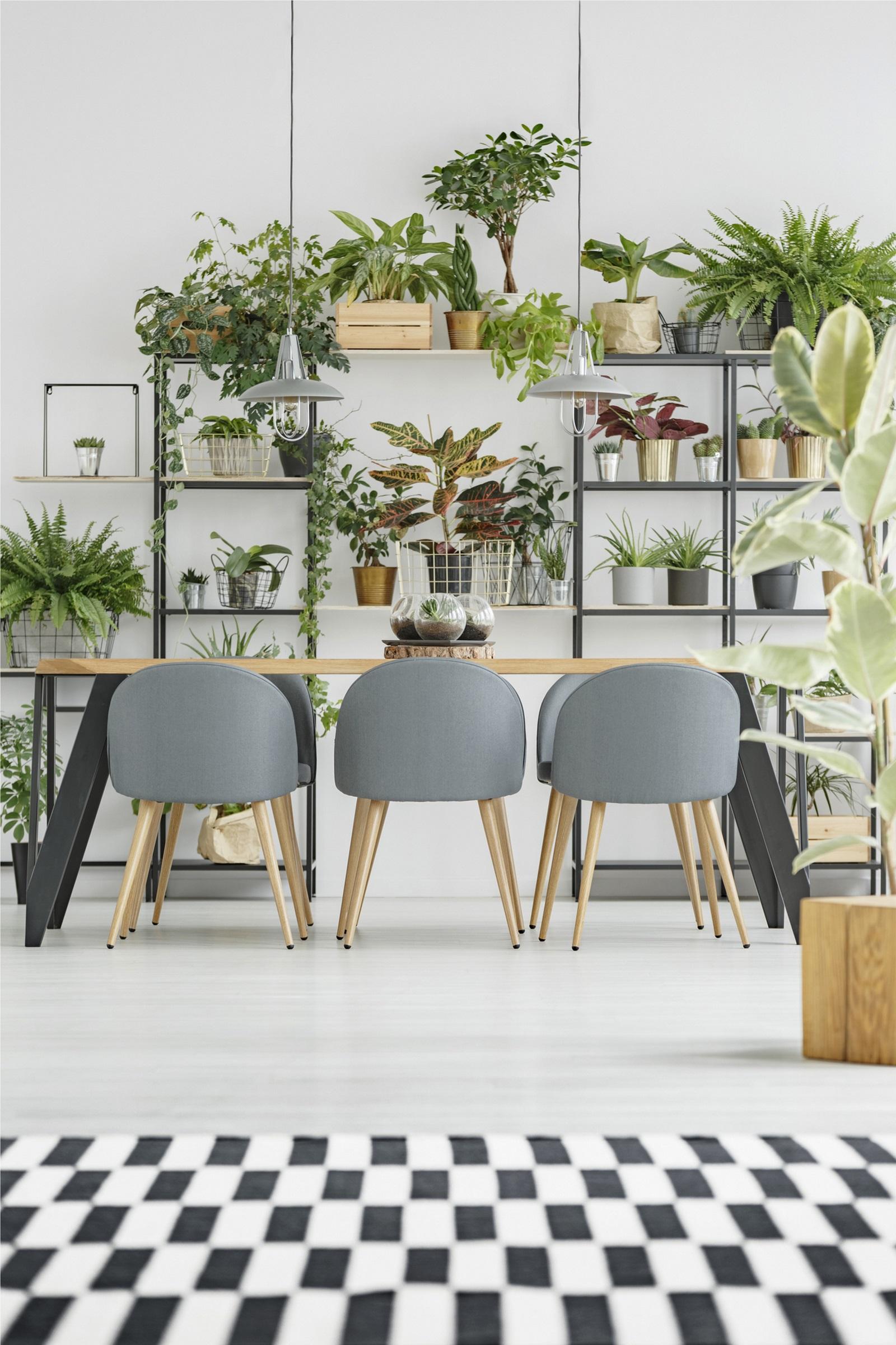"""Всички онези """"живи"""" стени от мъх, сукуленти или подходящи зелени растения, това е скоглуфт."""