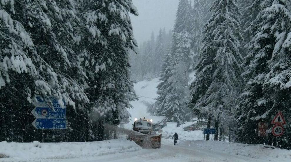 Бедствено положение в Смолянско заради снега (СНИМКИ)