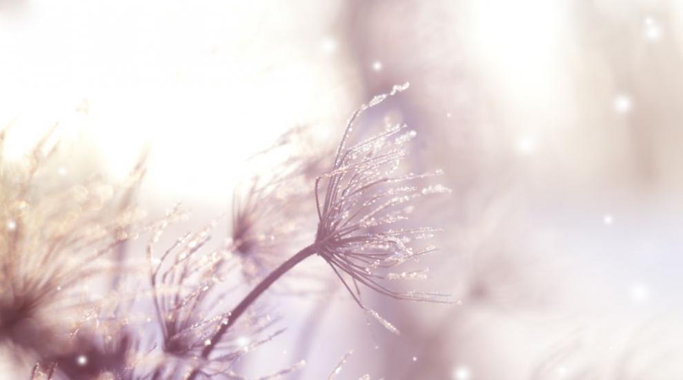 Сняг за Лазаровден в Смолянско