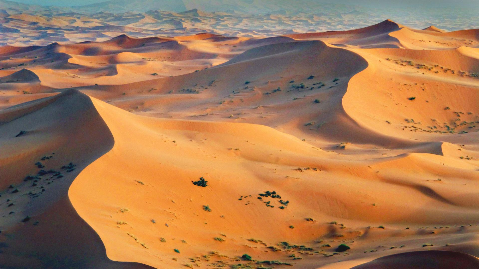 Мистериозни каменни конструкции в Западна Сахара