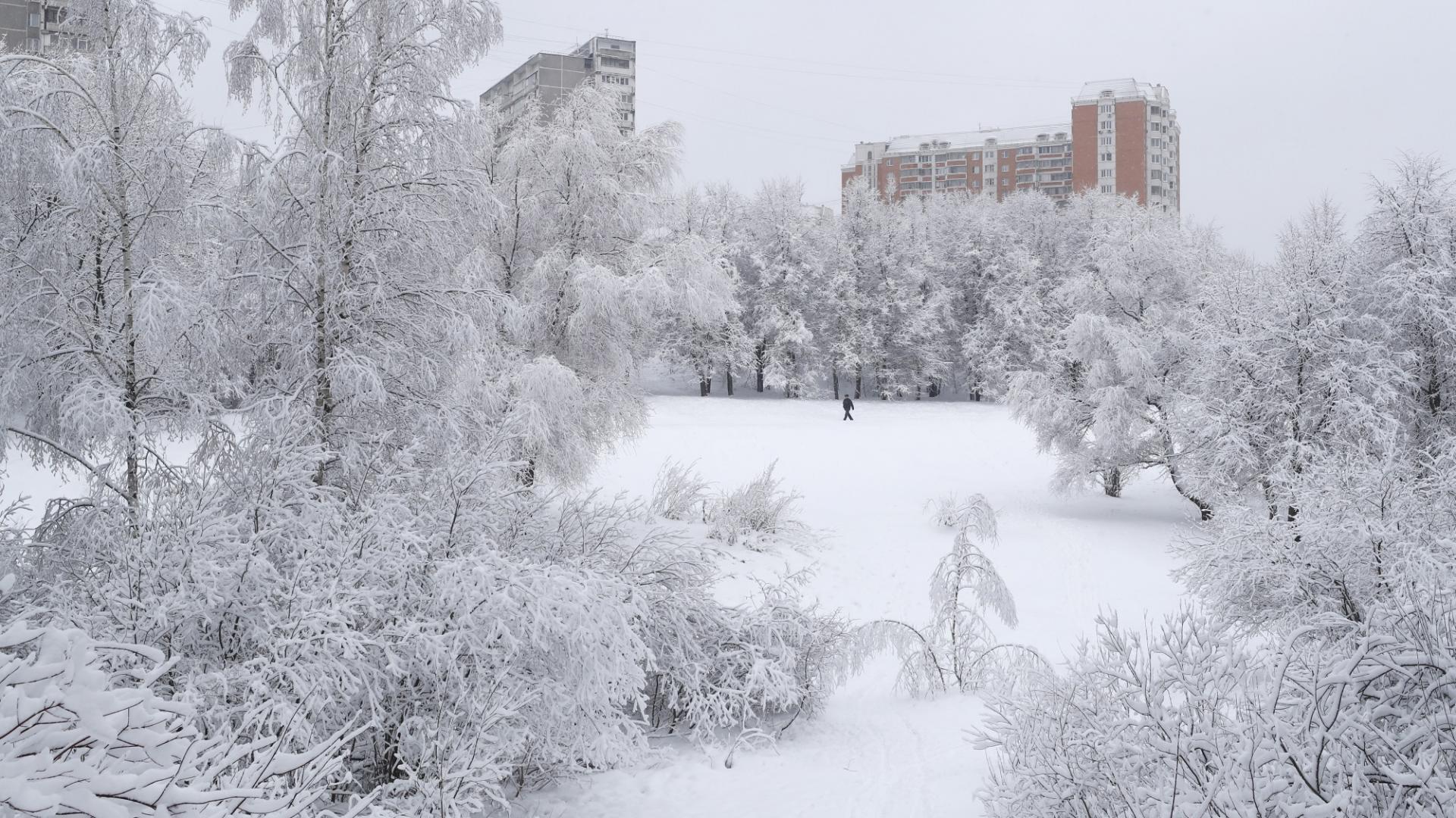Рекорден снеговалеж в Москва, отмениха полети
