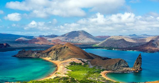 Специалисти откриха жив екземпляр на гигантска костенурка на Галапагоските острови,