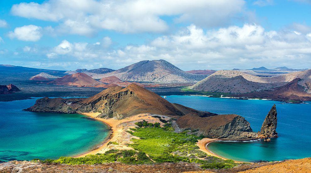 Учени откриха убежище на акули чук край Галапагоските острови