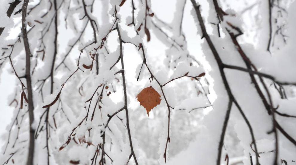 Ноември идва със захлаждане и сняг (ВИДЕО)