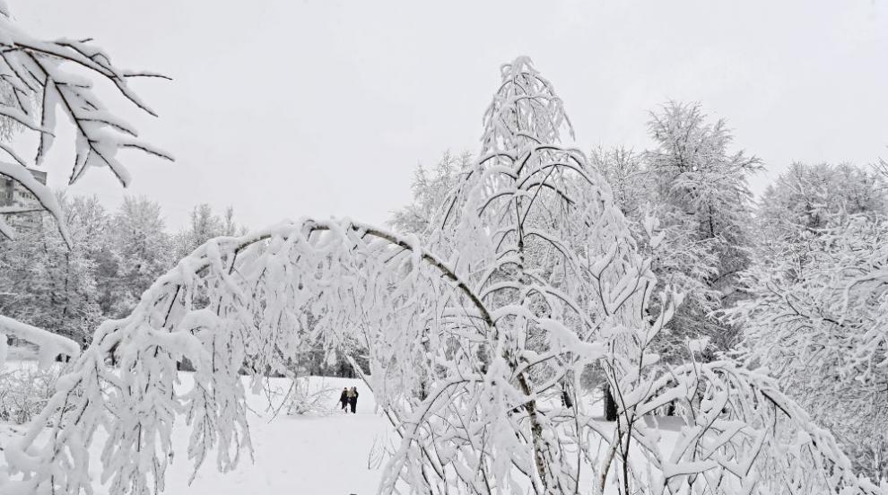 Сняг падна от покрив и премаза няколко автомобила в Пампорово (ВИДЕО)