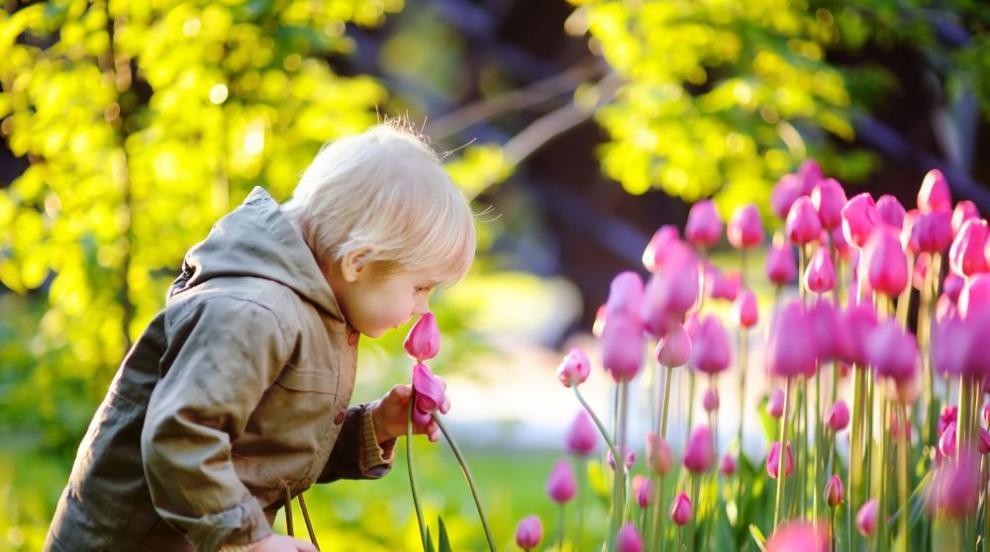 Пролетта се връща с пълна сила, до 20 градуса в неделя (ВИДЕО)