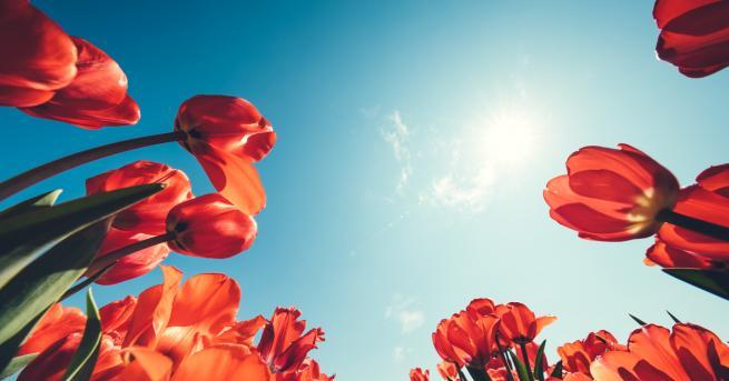 Предимно слънчево време ни очаква във вторник. Минималните температури ще