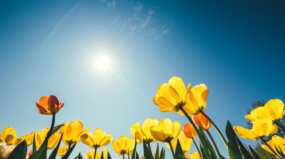Очаква ни слънчев и топъл вторник