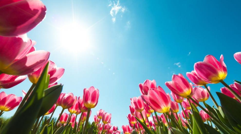 Кога ще се завърне пролетта? (ВИДЕО)