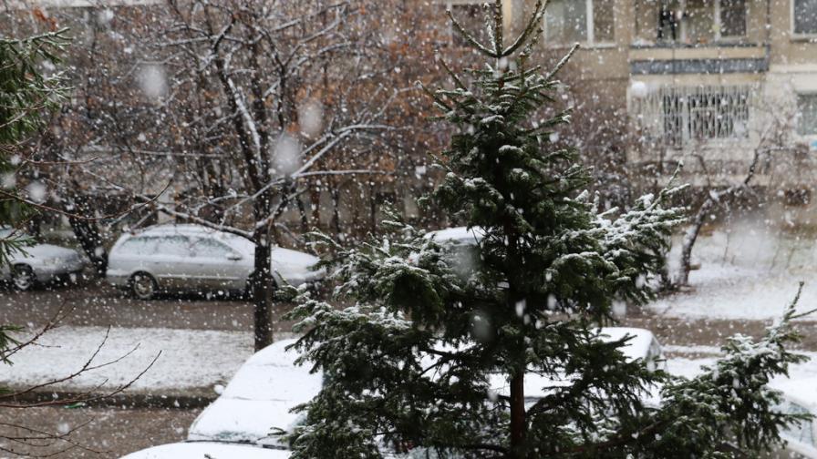 Сняг и вятър връщат зимата в България