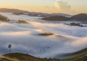Сидни отново потъна в мъгла