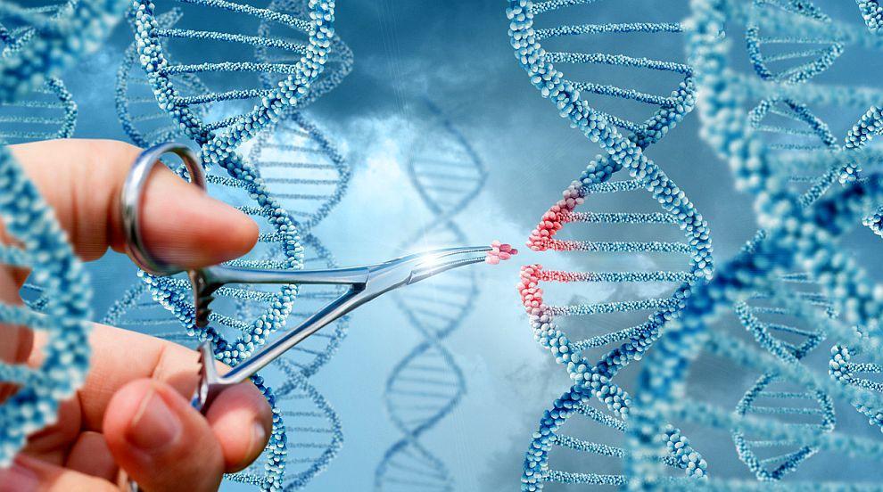 Генната терапия направи голяма крачка