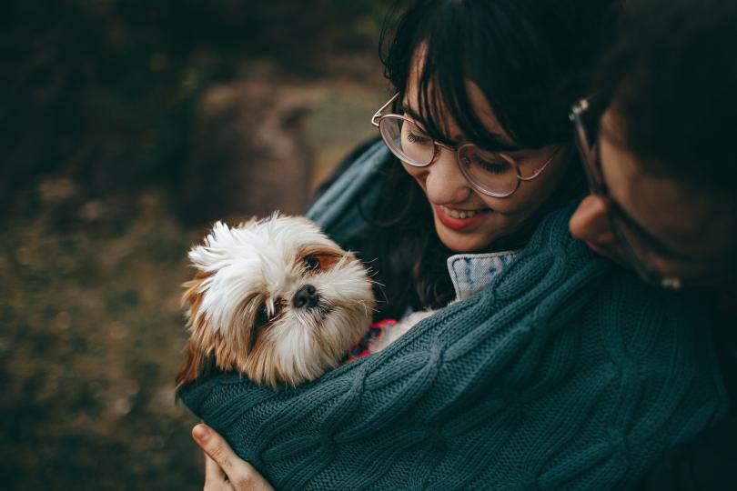 <p><strong>По-щастливи сте</strong> - Доказано е, че хората, които имат домашен любимец, са по-малко склонни да изпадат в депресивни състояния. А дори да се абстрахираме от това, което казват учените, смятаме, че не е необходимо да ви убеждаваме колко е прекрасно да имате пухкава топка любов, която да ви чака вкъщи и да показва обичта си безрезервно.</p>