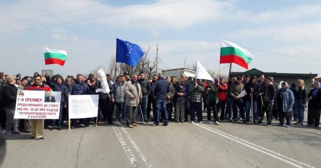 Тютюнопроизводители от Североизточна България излязоха на протест в село Пристое.