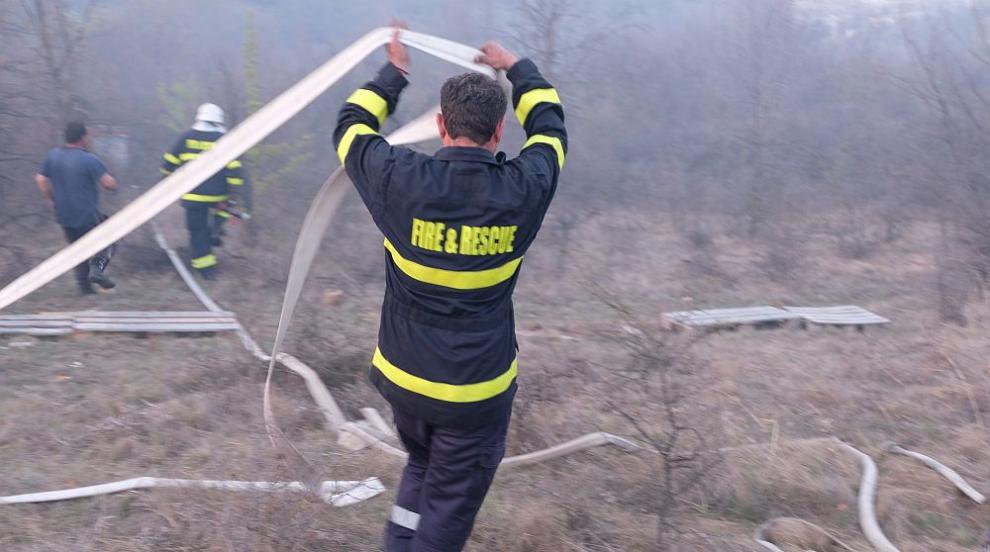 Още един пожар край Благоевград, горят десетки декари храсти и млади гори...